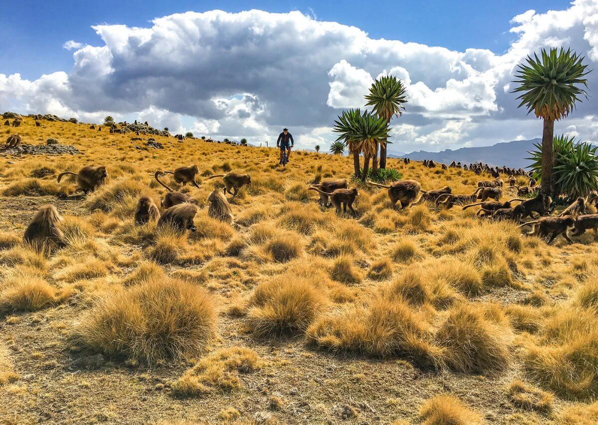 ethiopia cycling destinations