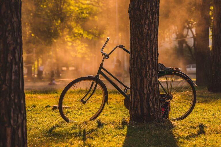 sustainably using bike